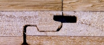 Cross-section of CosLoc Engineered Floor